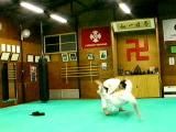 20070115yaahazunage11